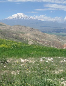 Mt. Ararat, June 2013